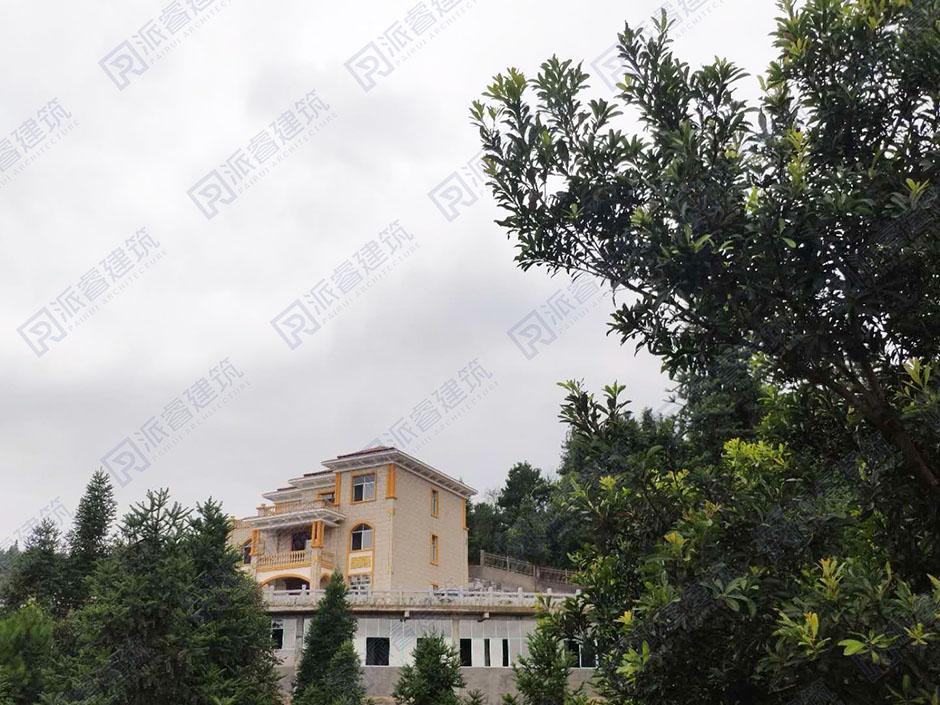 一幢金粉奢华的农村自建欧式别墅设计【石公馆】